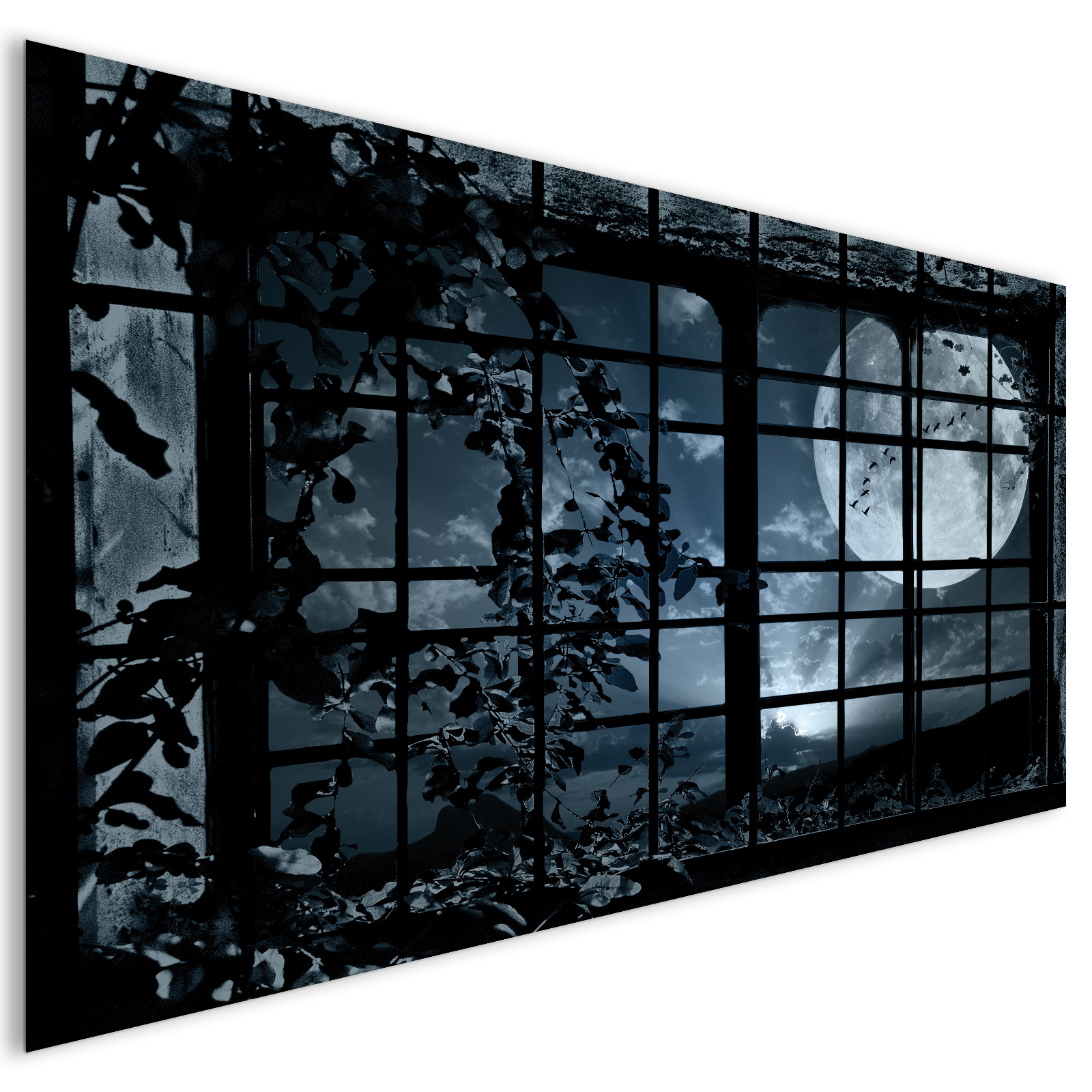 extra large black spooky moon window modern fantasy acrylic glass wall art laguna project. Black Bedroom Furniture Sets. Home Design Ideas