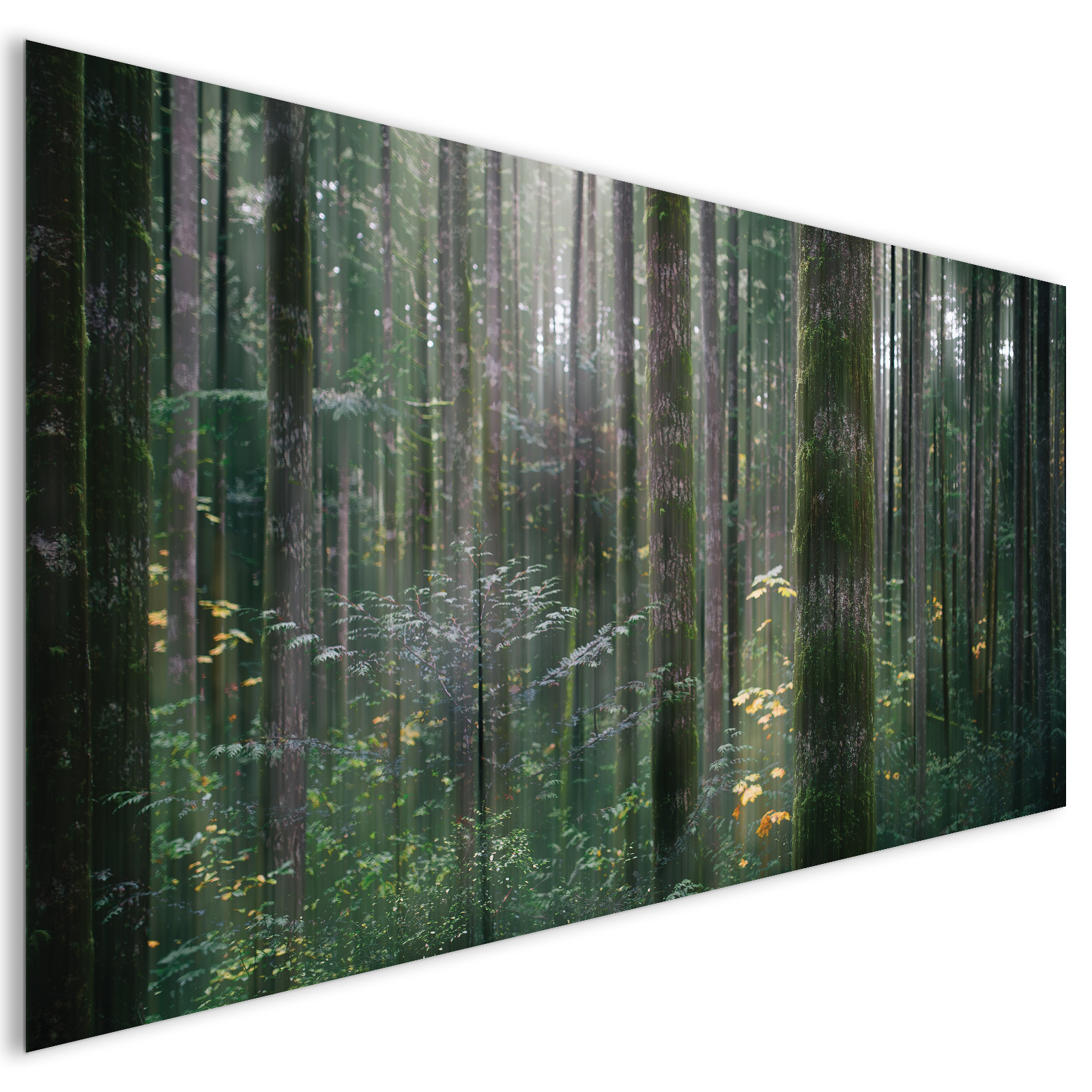 extra large green trees forest modern nature acrylic glass wall art laguna project. Black Bedroom Furniture Sets. Home Design Ideas